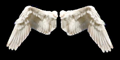 Jo's Devotions: My Angels & I