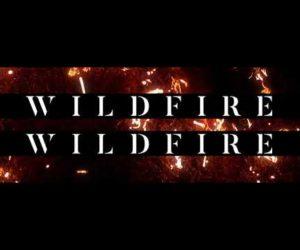 Lyric Video: Crowder - Wildfire