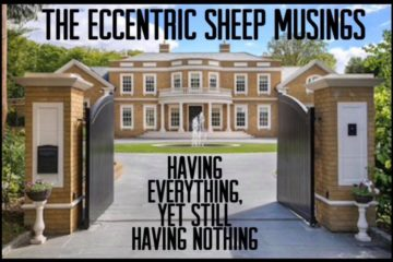 The Eccentric Sheep Musings: Having Everything, Yet Still Having Nothing