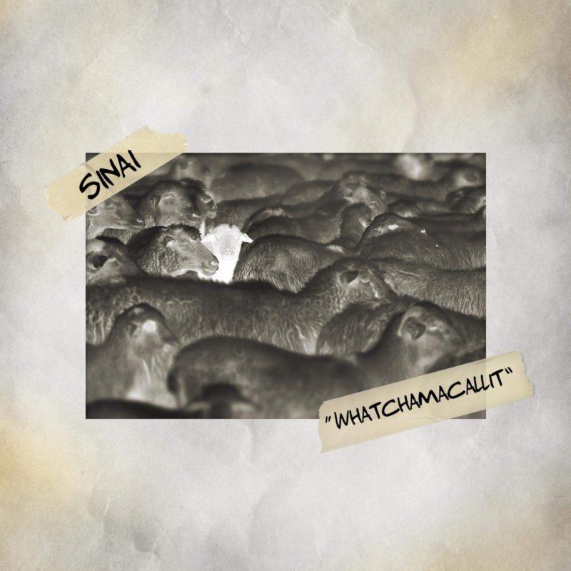 Sinai Releases WHATCHAMACALLIT Single