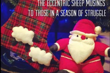 The Eccentric Sheep Musings: To Those in a Season of Struggle