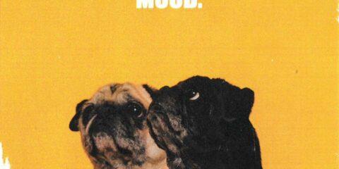 Social Club Misfits Release Mood EP