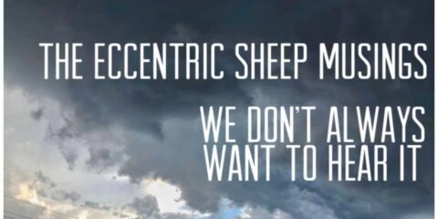 The Eccentric Sheep Musings: We Don't Always Want To Hear It