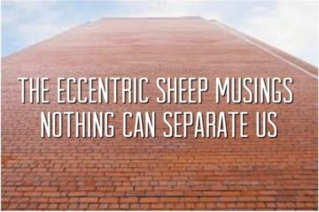 The Eccentric Sheep Musings: Nothing Can Separate Us