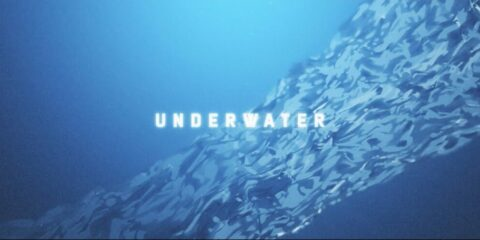 A New Era Underwater Begins for Fight The Fade