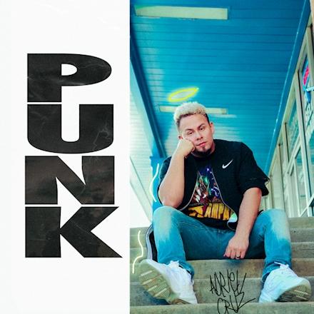 Skrip Announces New PUNK Album Details